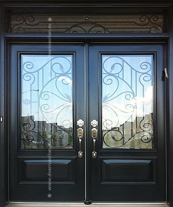 железные двери от 7000